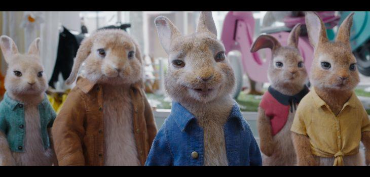 Peter Rabbit 2 4K UHD screen shot